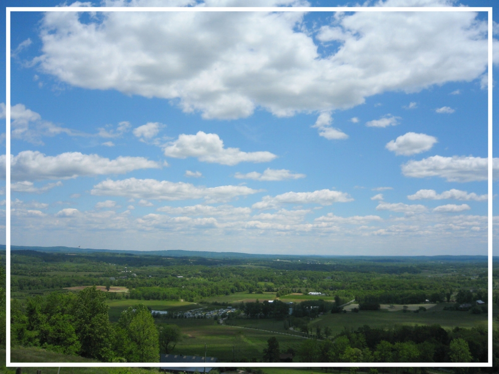 Northern Virginia by steve loya | Zaakirah Nayyar | Romantic Locatons
