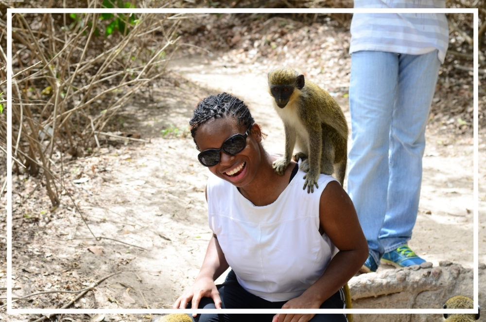 A monkey jumped onto my shoulder while I was feeding other monkeys.