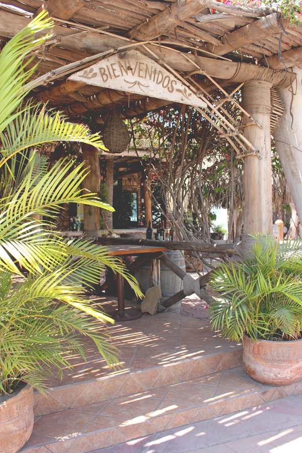 activities-villa-del-palmar-loreto-18.png