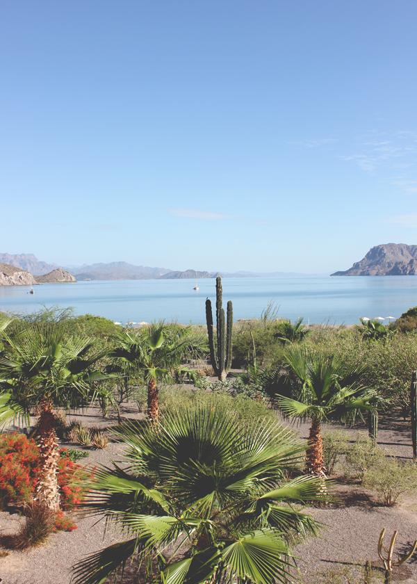 villa-del-palmar-loreto-resort-1.png