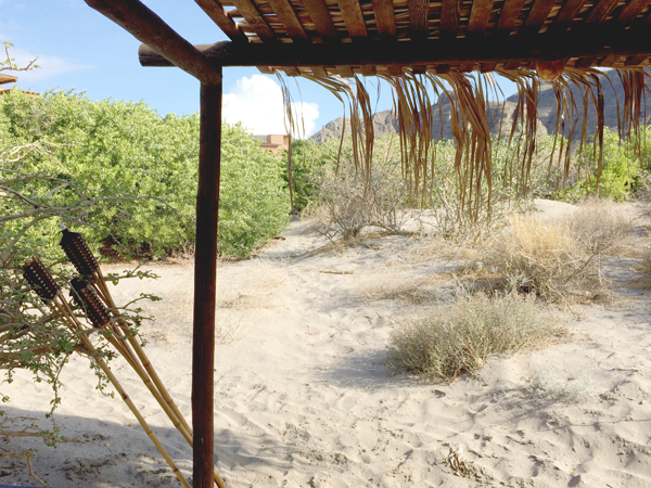 relaxation-villa-del-palmar-loreto-22.png