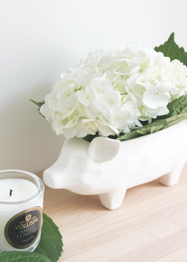 Ceramic-Pig-Container-3-Ways-7.png