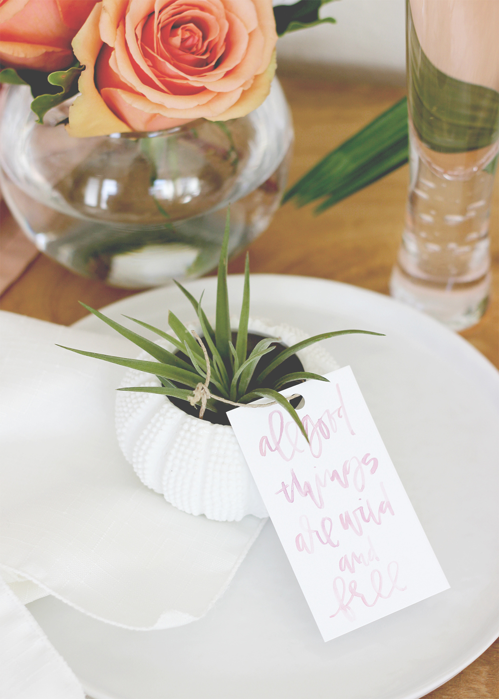 AIR PLANT WEDDING FAVOR