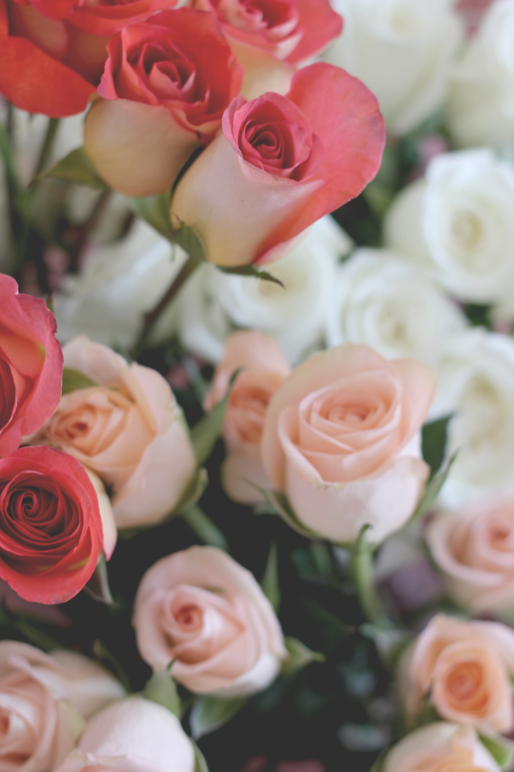 Dusty roses | A Fabulous Fete