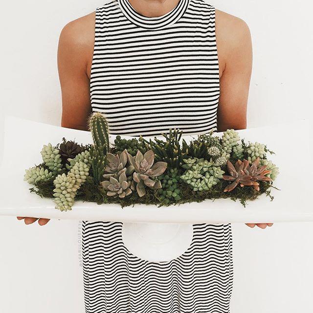 Succulent planter decor | A Fabulous Fete