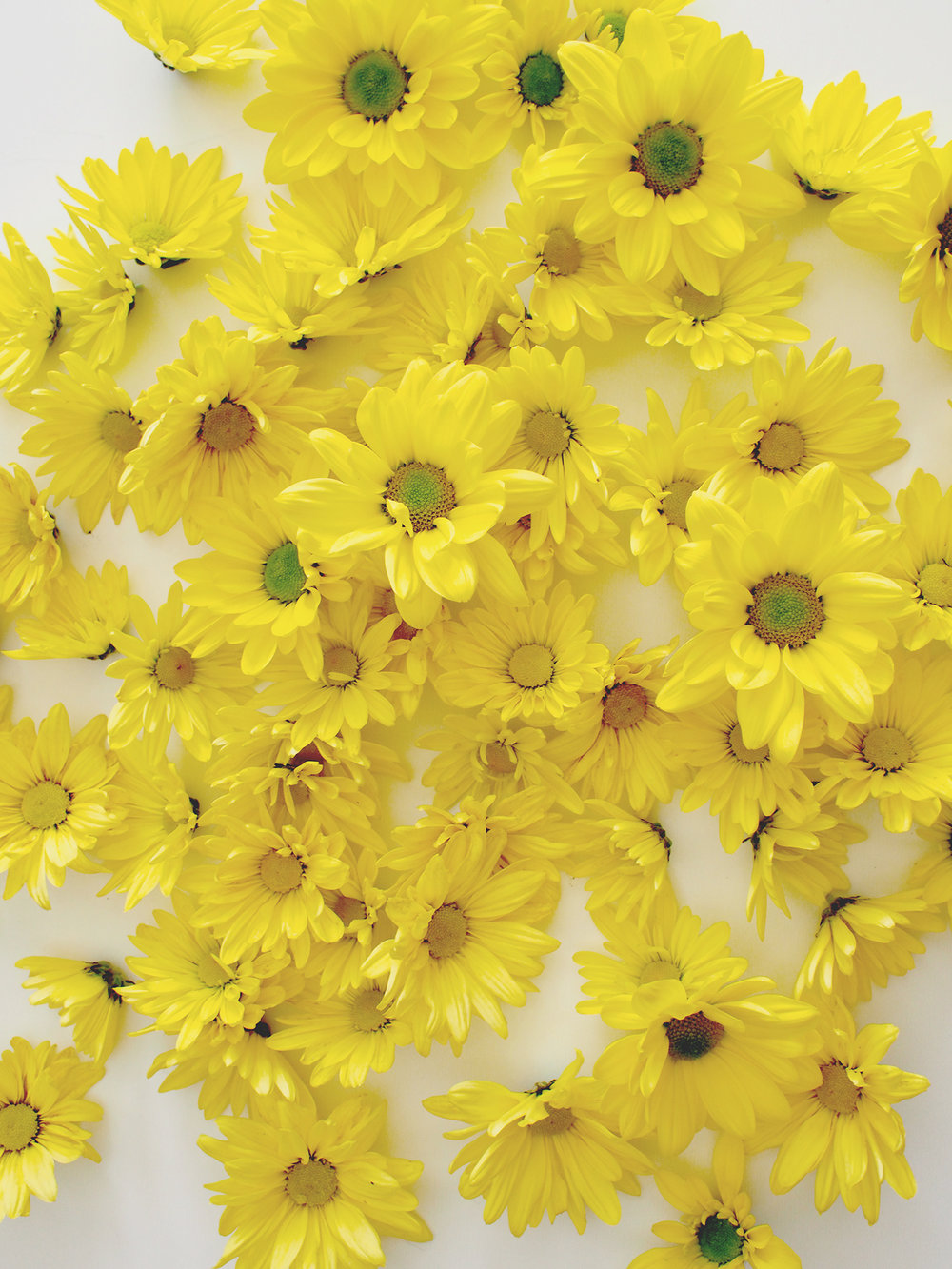 Piles of mums for a Fall DIY | A Fabulous Fete