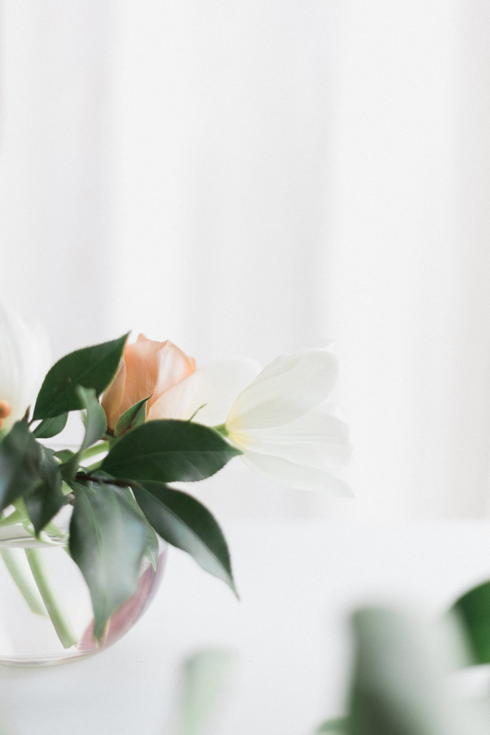 White tulips, perfect for holiday arrangements | A Fabulous Fete