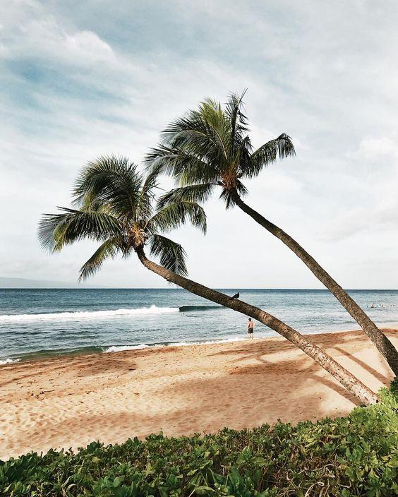 Kaanapali-Lahaina-Beach-Maui-Hawaii.jpg