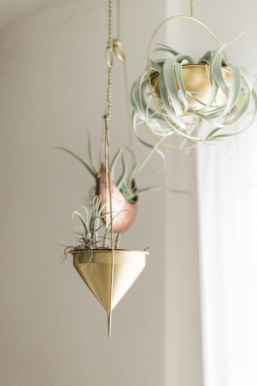 Air plant decor | A Fabulous Fete