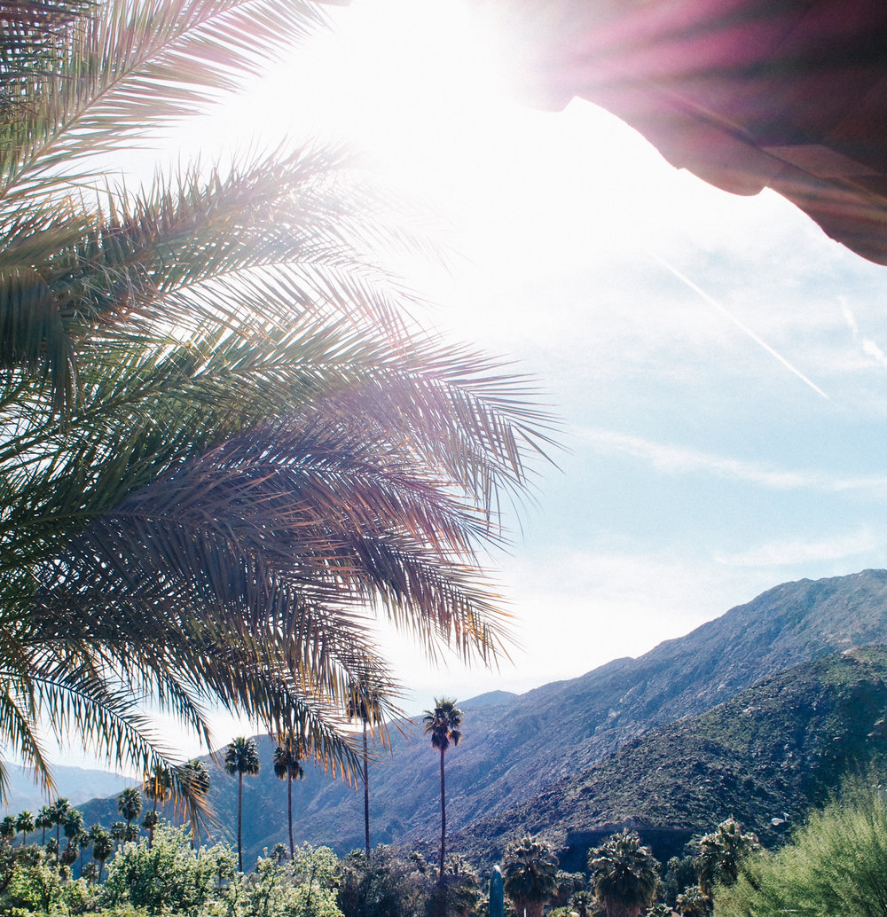 Palm Springs, what to do | A Fabulous Fete