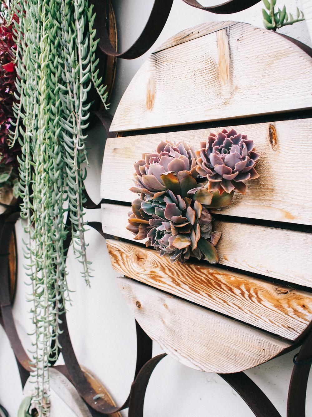 DIY succulent wall | A Fabulous Fete