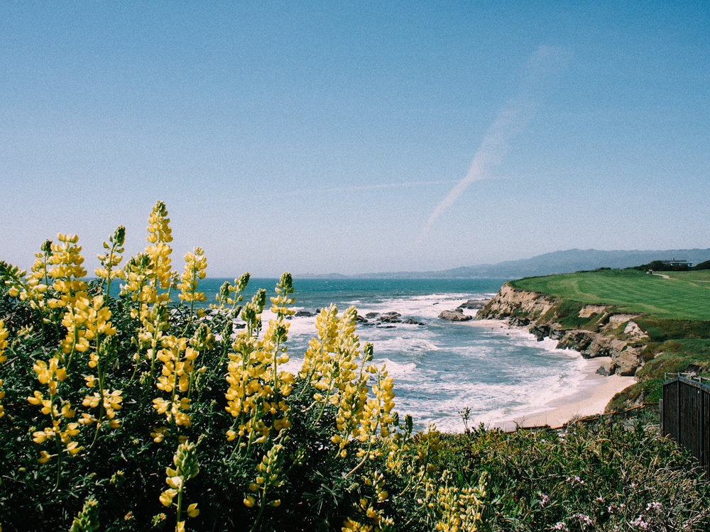 Gorgeous views in Half Moon Bay | A Fabulous Fete