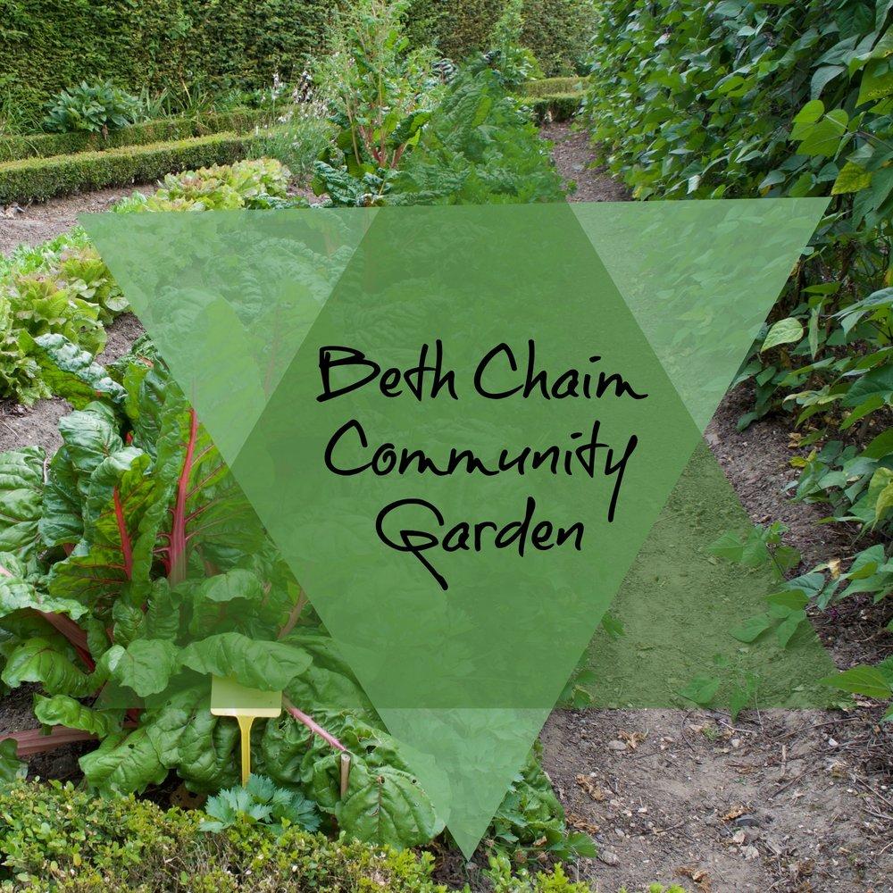 Beth Chaim Community Garden.jpg