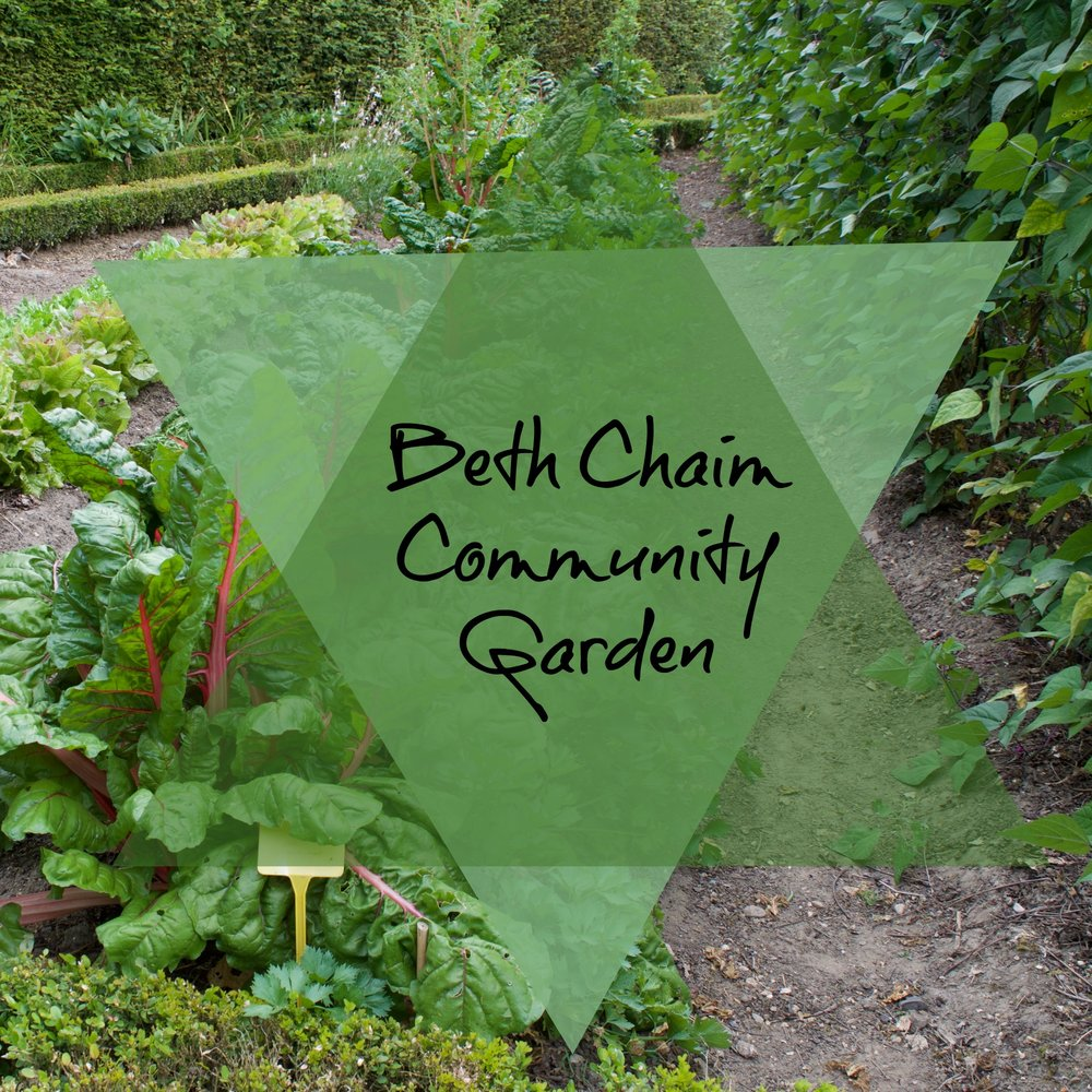 Help and Plant the communtiy Garden!
