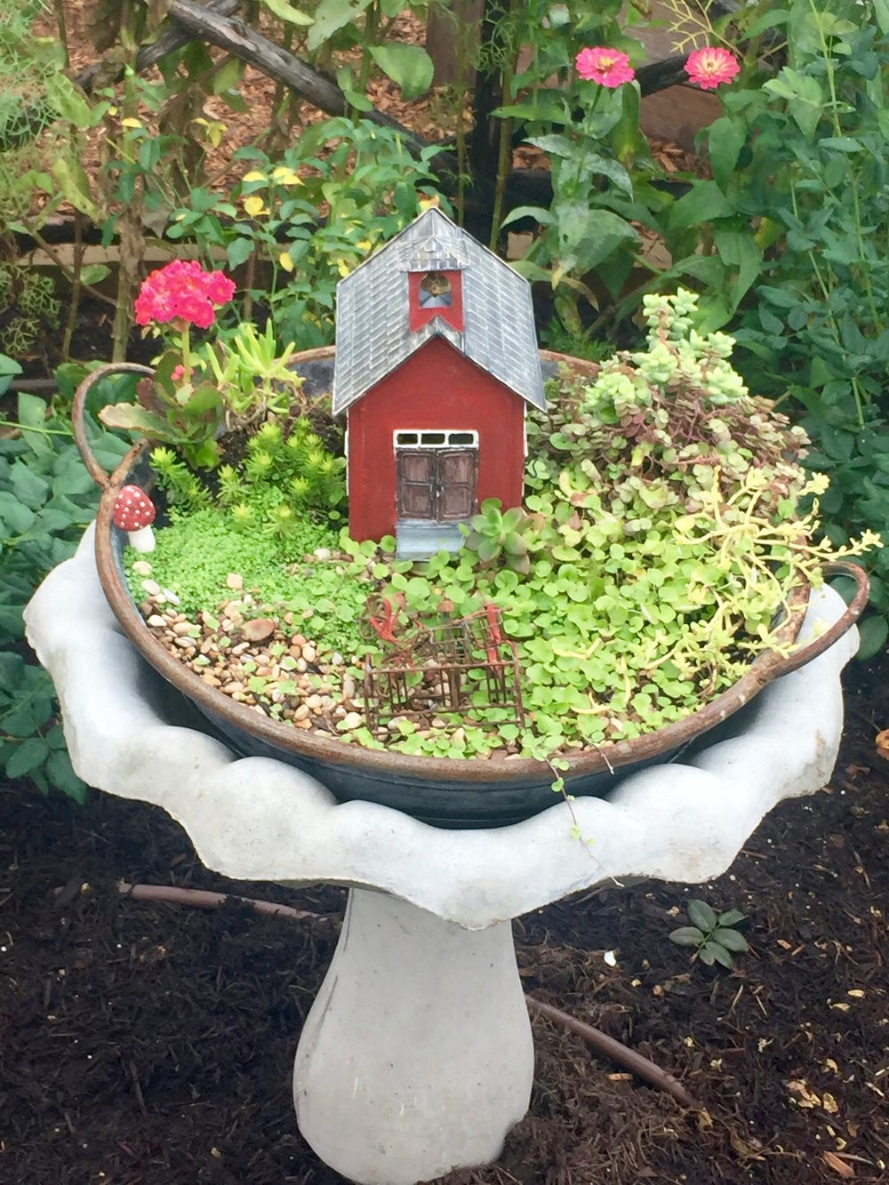 Cutest little fairy gardens!