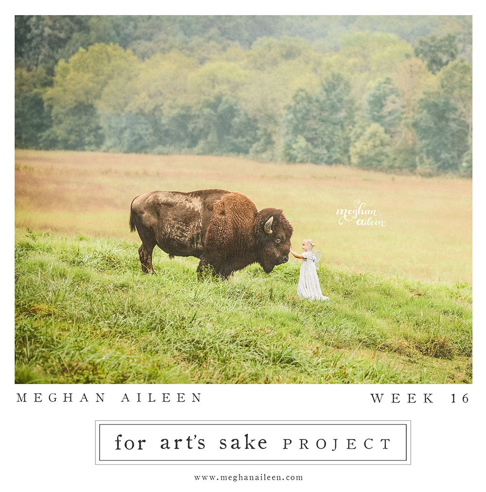 week-16-web
