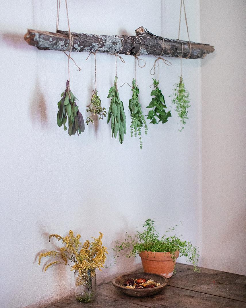 herb drying rack.jpg