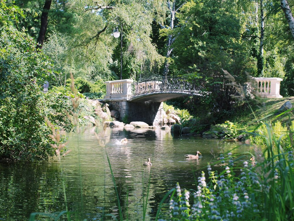 beautiful, peaceful bridge in Lazienki Park. I sat here and relaxed for a while, watching the ducks splash around