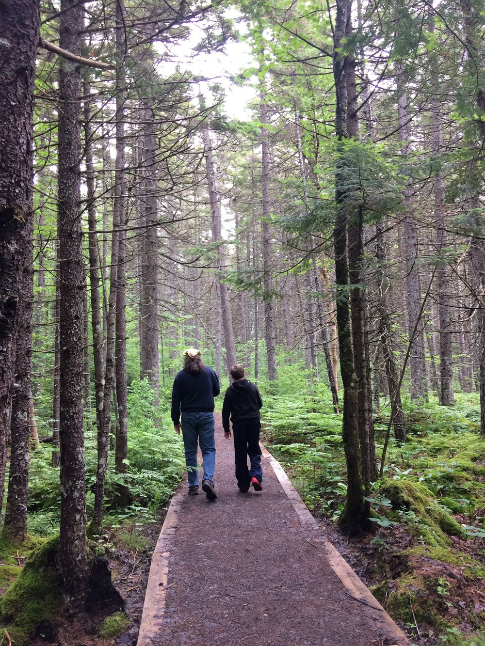 The trail to Helldiver Pond was my favorite. Smelled of balsam and the forest was beautiful.