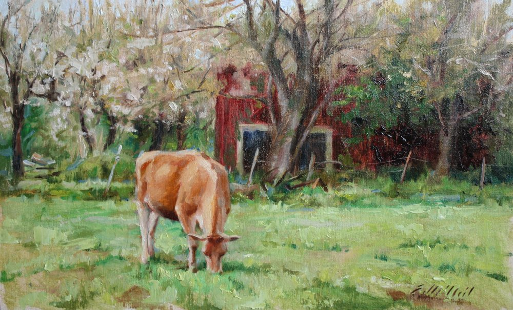 A Cow at Home 8.5 x13.5 $400.jpg