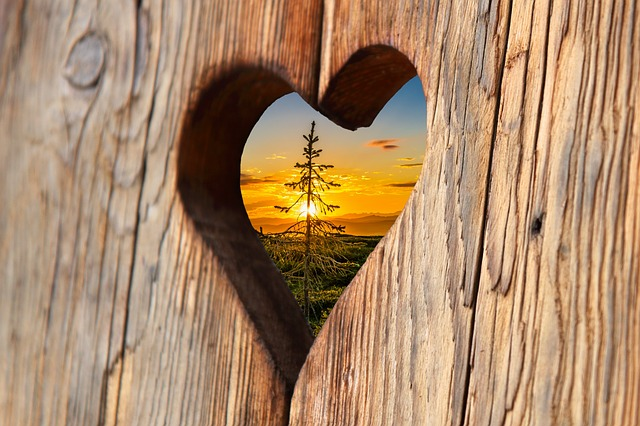 heart-2041866_640.jpg
