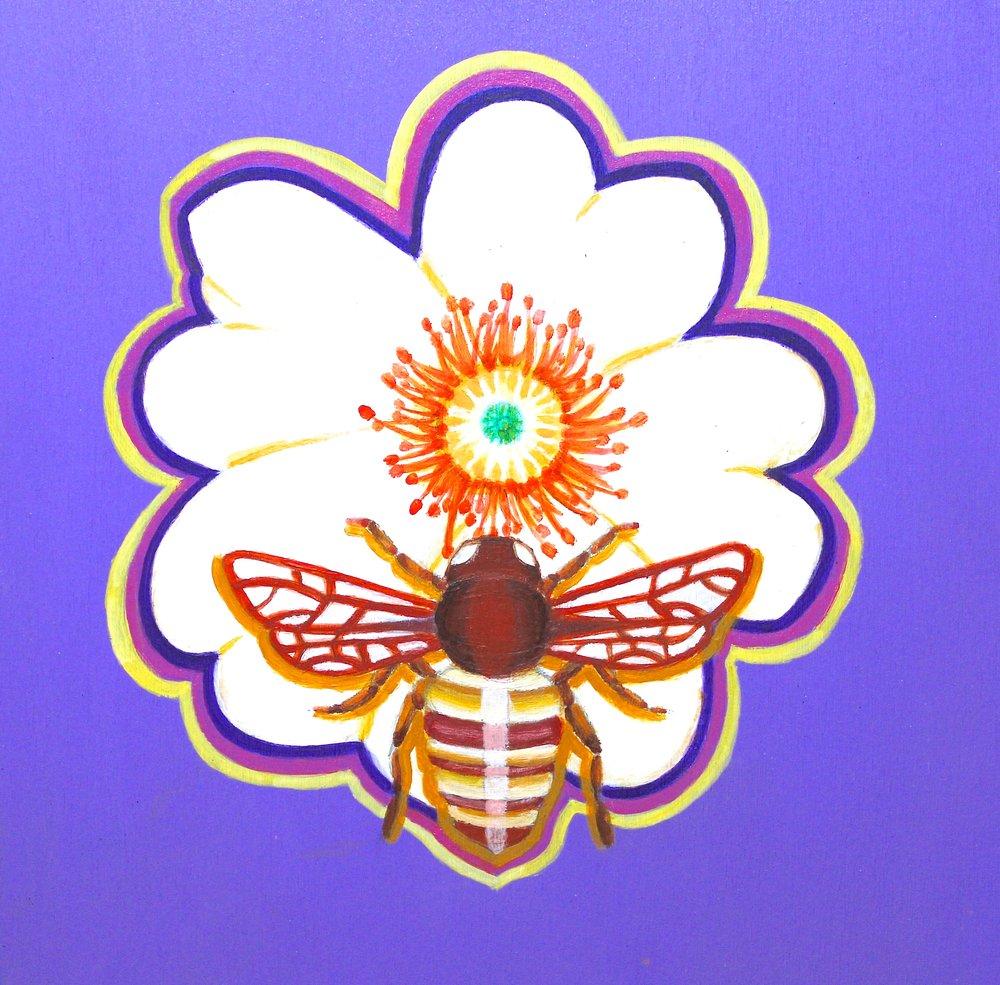 Cherokeerose_bee.jpg