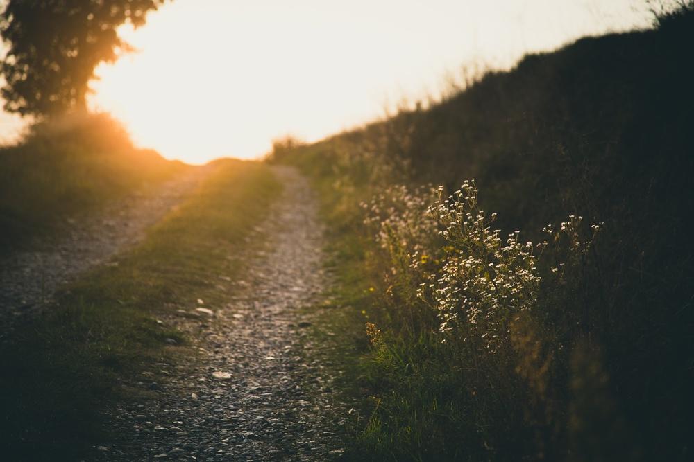 path to sun.jpg
