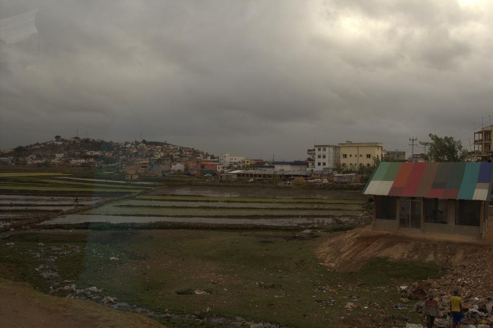 Rice fields near the capital city of Antananarivo (Tana)