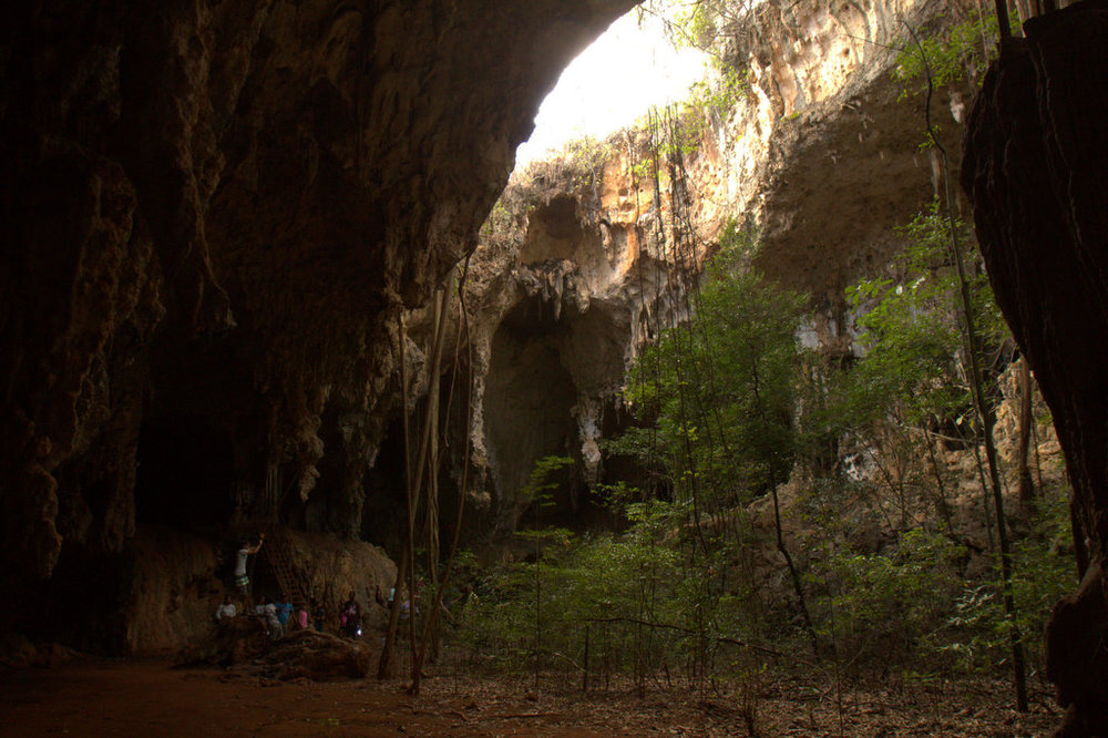 Idyllic Cave Opening