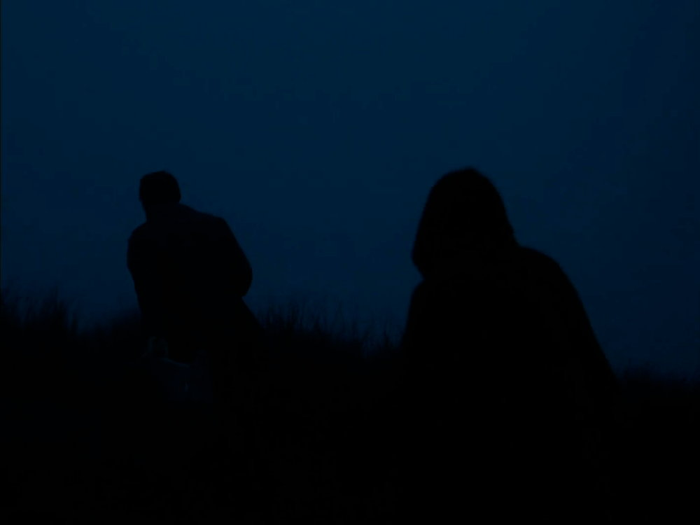 Wuthering.Heights.2011.LIMITED.1080p.Bluray.x264.anoXmous-2.jpeg