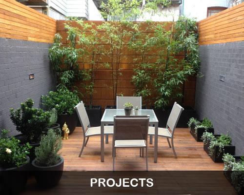 Backyard-Bamboo copy.png