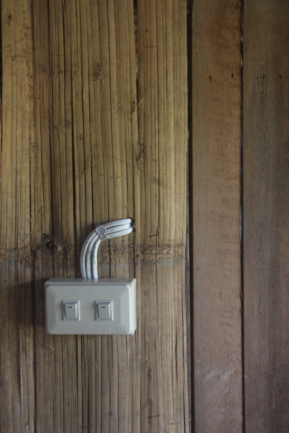 Light Switch on Bamboo