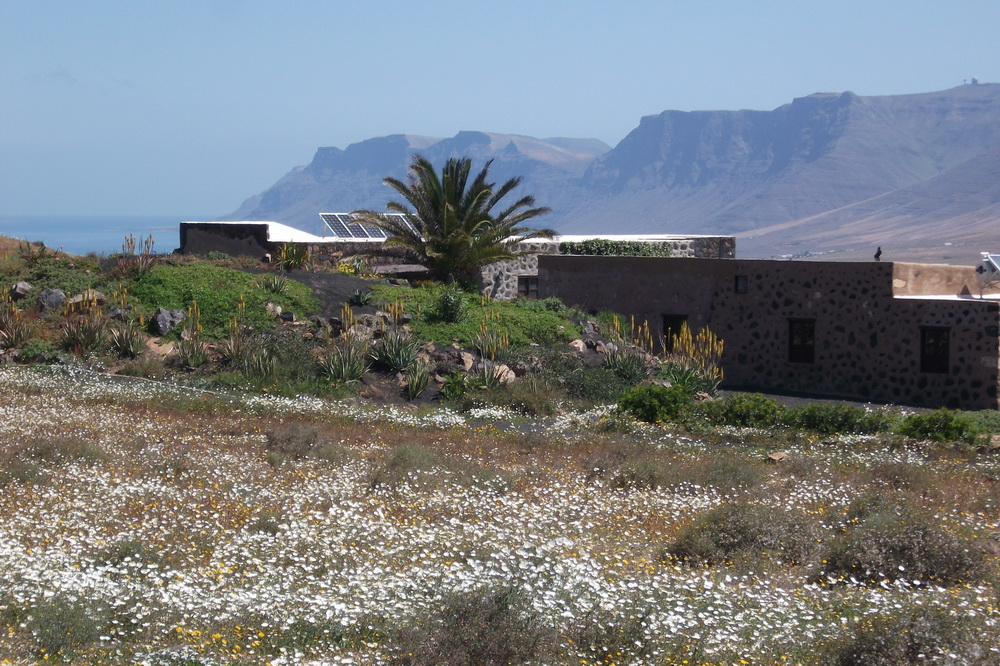 Here is an aspect of the Jewel of the Sands 3 bedroomed Eco Cottage Lanzarote Finca with the beautiful Famara cliffs in the background from where the previous picture was taken