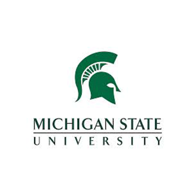 Michigan State University · New program development; research, website and collateral · Broad MS in Marketing Research ·      In partnership with Ciesa Design