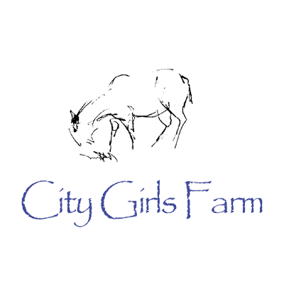 City Girls Farm    • Research, brand system, website and social media