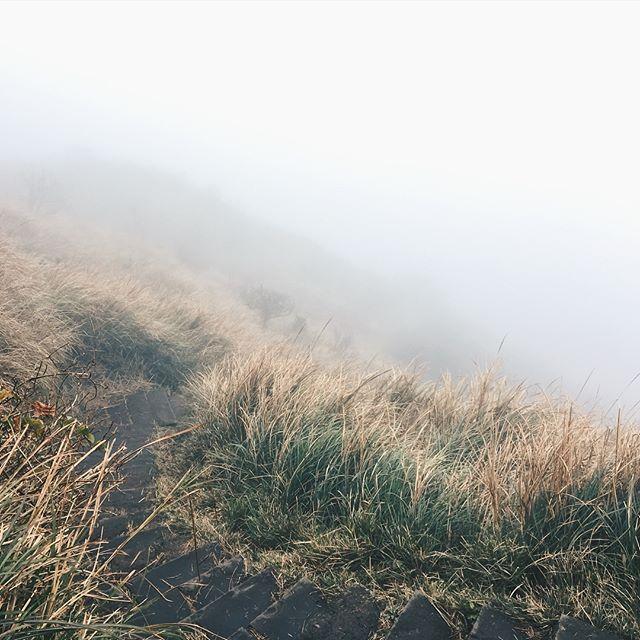 你以為什麼都看不見 但其實你越來越清楚 那些 都沒那麼重要了  #치싱산 #대만여행 #七星山 #charmvilla #참빌라 #금붕어티백  5.7km 1120m