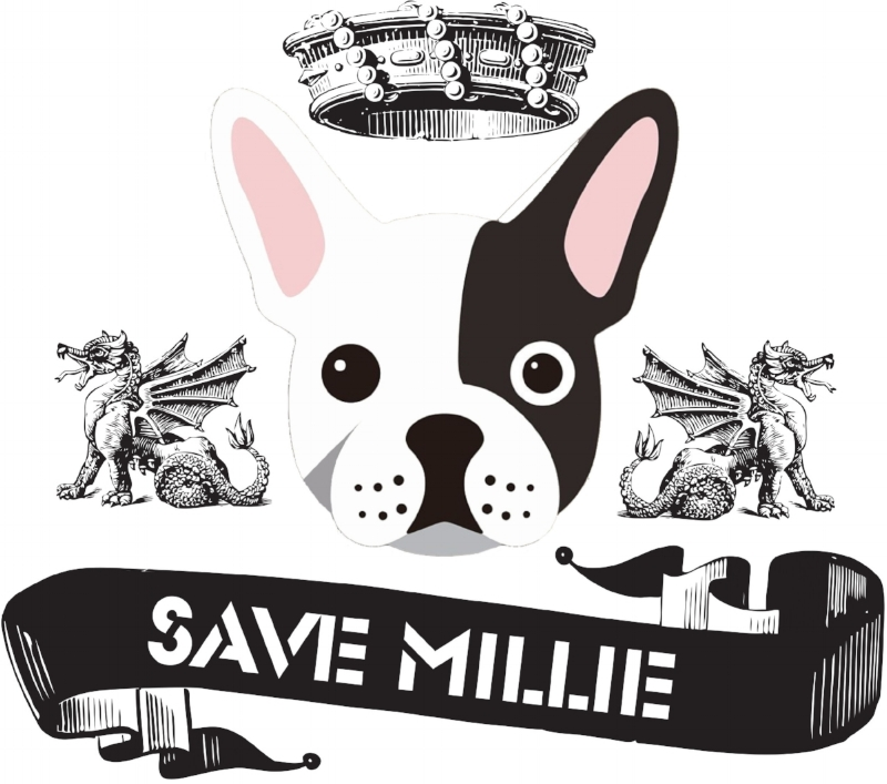 Save Millie 22nd April