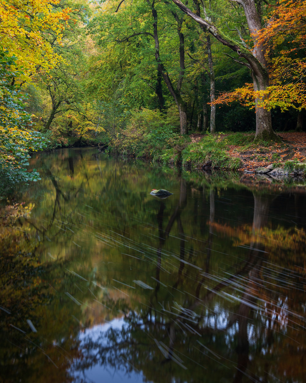 Autumn at the River Teign, Dartmoor, Devon