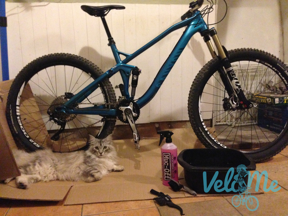 Bike cleaning buddy