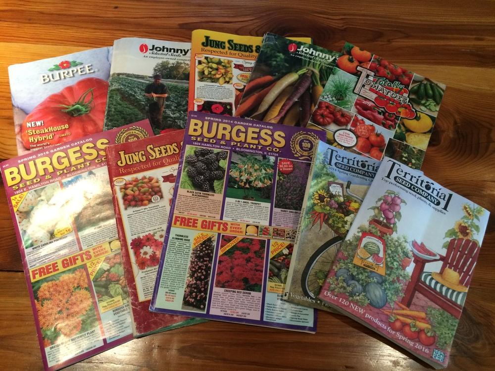 Seed Books