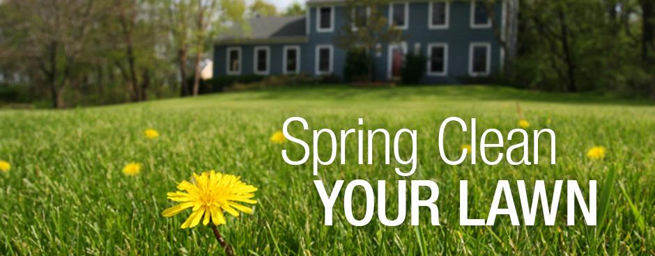 Spring-Lawn-Care-Tips.jpg