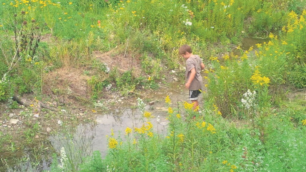 Simon, a resident of Creemore, explores the restored stream