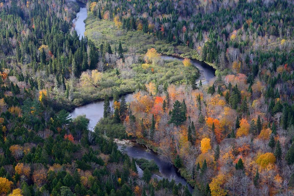 Bartholomew River Project (Photo by Mike Dembeck)