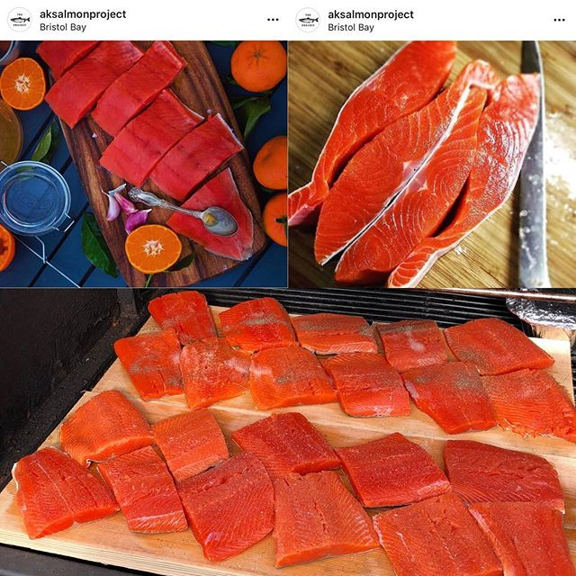 I will be doing restaurant and home deliveries through late November. Get it before it's gone! #wildalaskansalmon #greatnorthernseafoods #knowyourfisherman #sustainable #eatwild  Photo credit: @lindseyraya @setthenet
