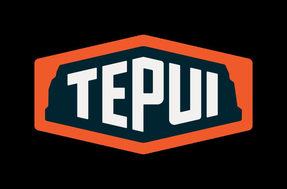 Tepui_Logo_Primary_RGB1 (1).png