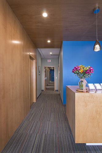 Wood paneling and bold blue walls, designed by NewStudio Architecture, add interest to a long hallway