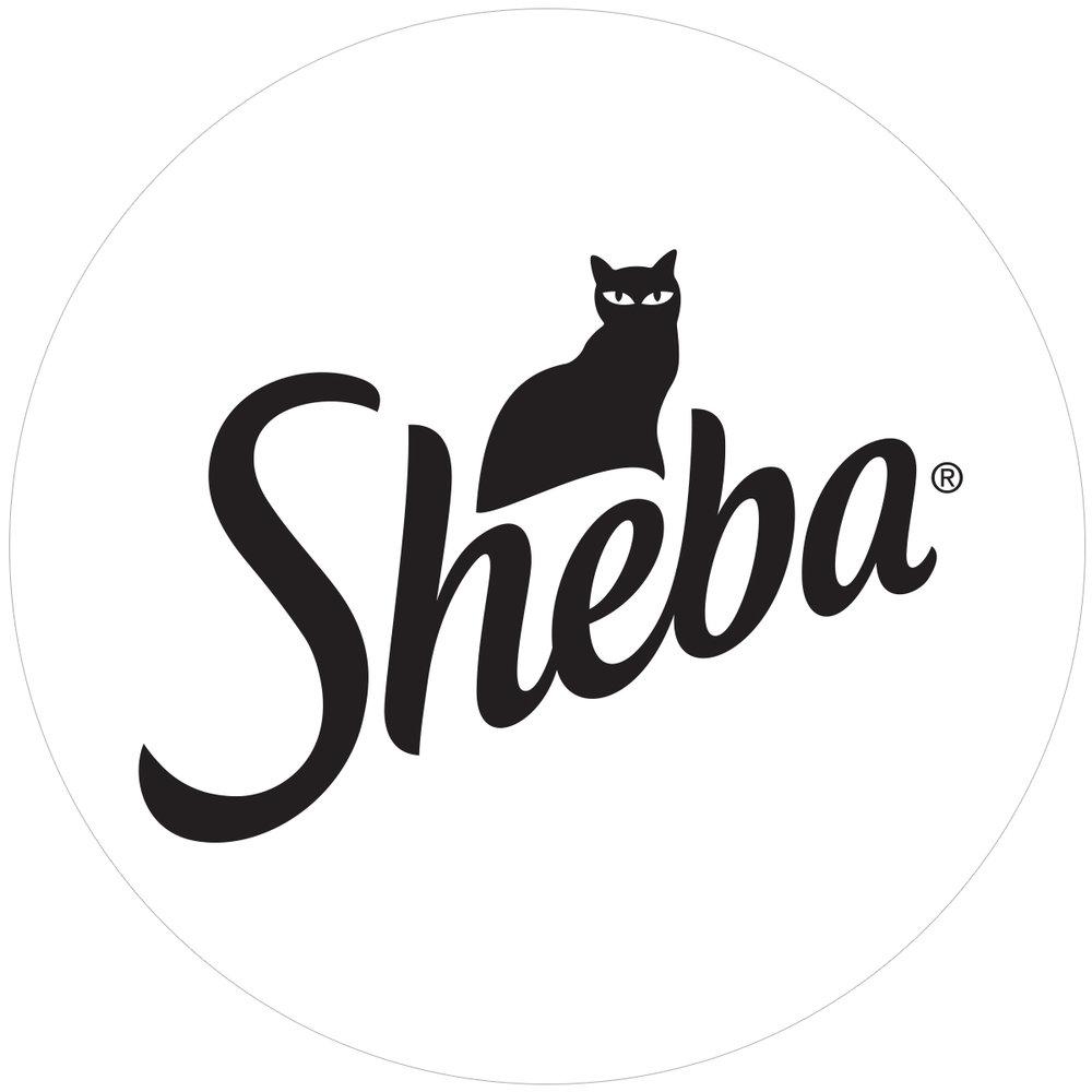 Sheba.jpg