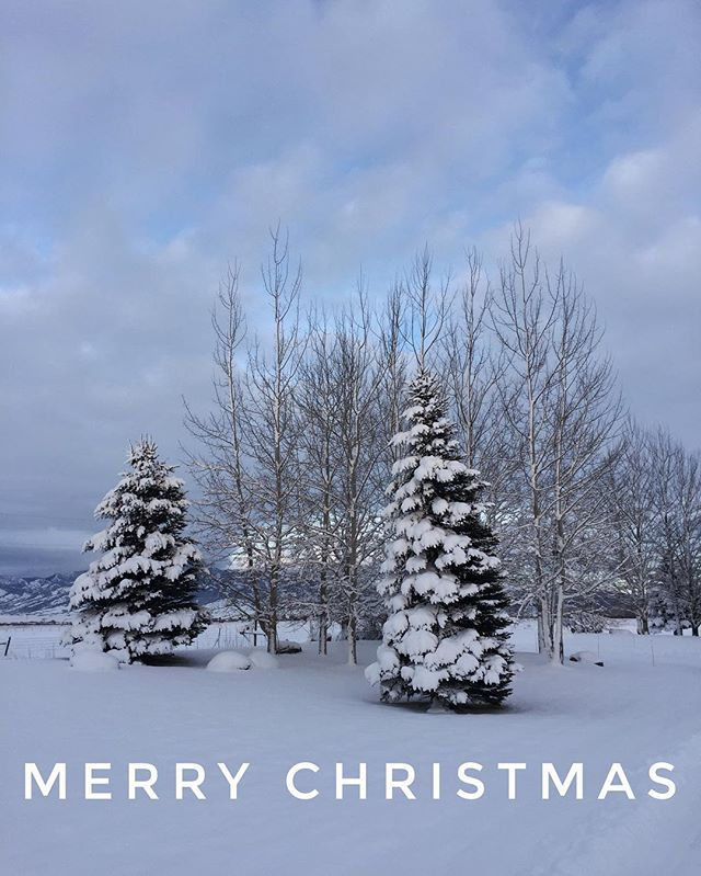 Merry Christmas from all of us at Bayliss Architects. ❄️🎄❄️