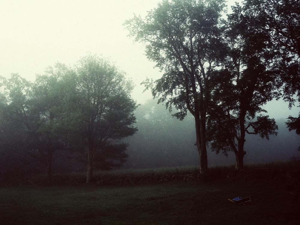 Catskills-43 (1).jpg