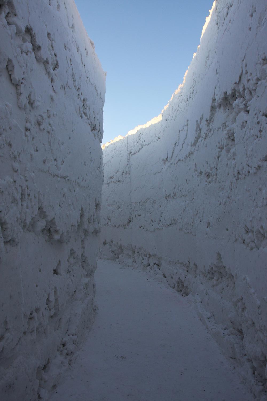 ALASKA MORE - 25.jpg